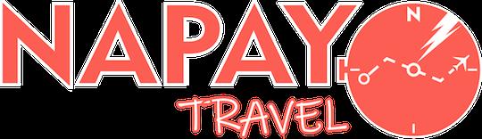 Napay Travel Logo